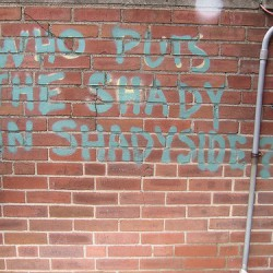 Found on Flickr: Who Puts the Shady in Shadyside