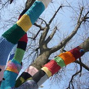 Volunteer to Help Knit & Crochet Trail Markers for the Park