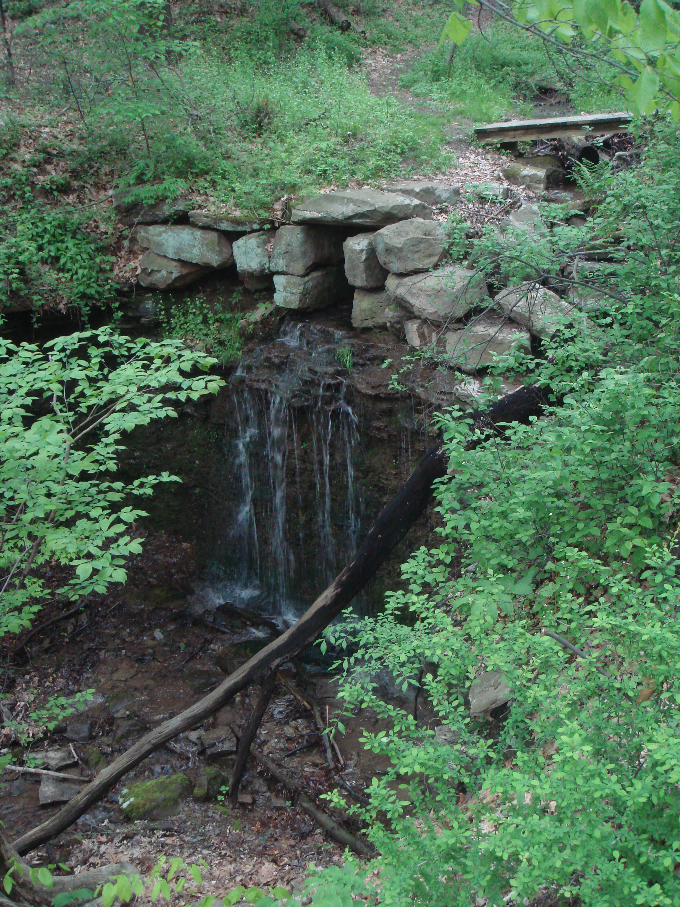 Waterfall at Beachwood Farms, as seen from Pine Hollow Trail (Photo by Andrew)
