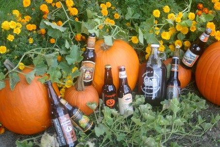 pumpkin-beer-harris-grill
