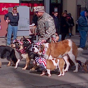 Patriotic Pups at the Parade