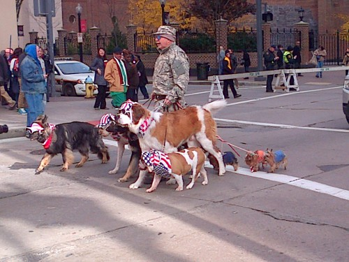 veterans-day-parade