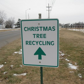 Christmas Tree Recycling in Pittsburgh and Allegheny County
