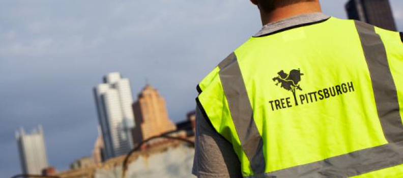 Trees Matter in Cities – Tree Pittsburgh Featured on National Blog